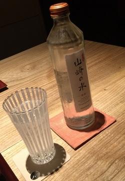 fujiyama 11.jpg