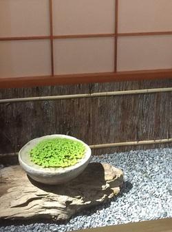 fujiyama 6.JPG