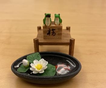 sukeroku aun-no keru hasuike no nishikigoi.jpg