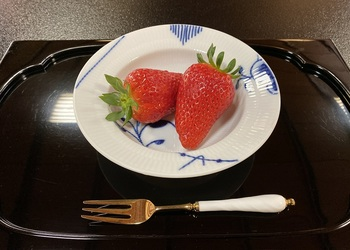 taka shofukuro-36.jpg