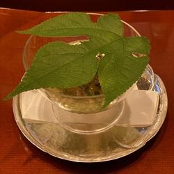 taka yamagami-11.jpg